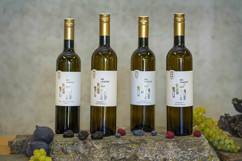 Shop Weinfoto
